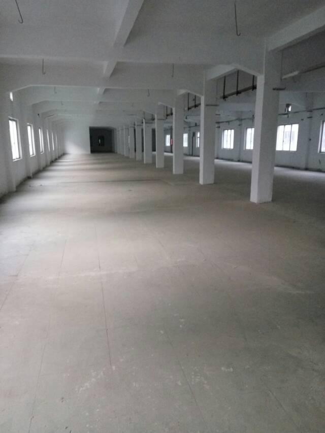 石碣镇大型工业园区分租独栋靓房