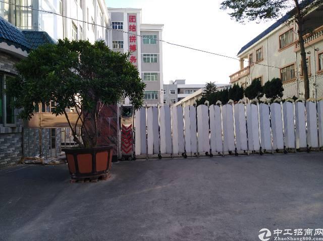 茶山镇独门独院现成家具厂房招租-图3
