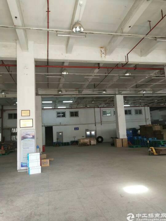 布吉坂田新出一楼带卸货平台2600平方厂房-图4