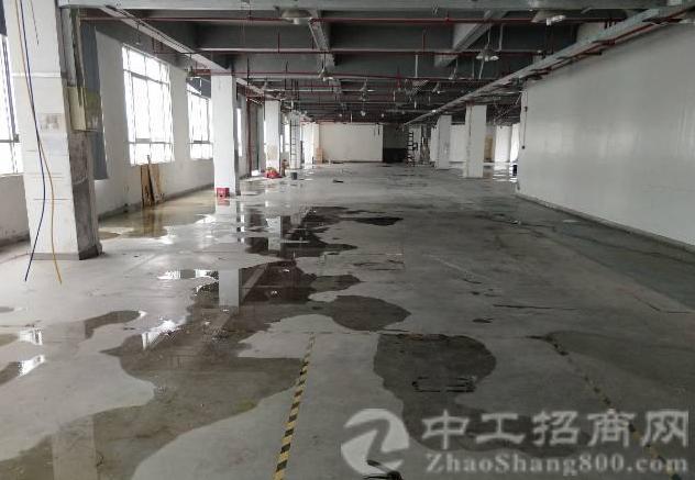 公明镇中心龙大高速出口附近一楼二楼每层1840平方厂房-图2