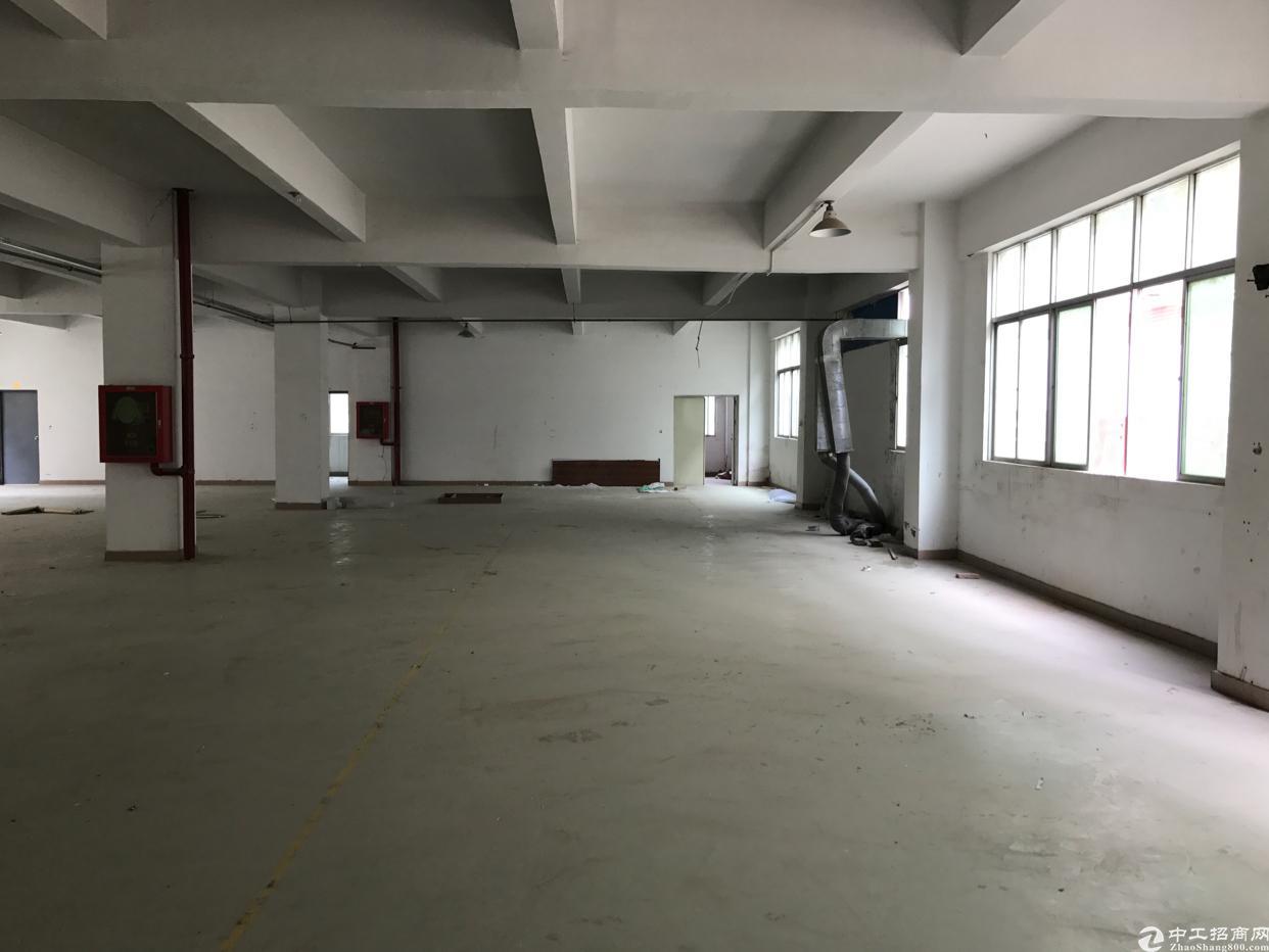 横岗水官高速出口二楼1400平精装修厂房出租