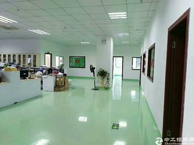 公明田寮二楼1500平方精装修,原房东,租金16元-图2