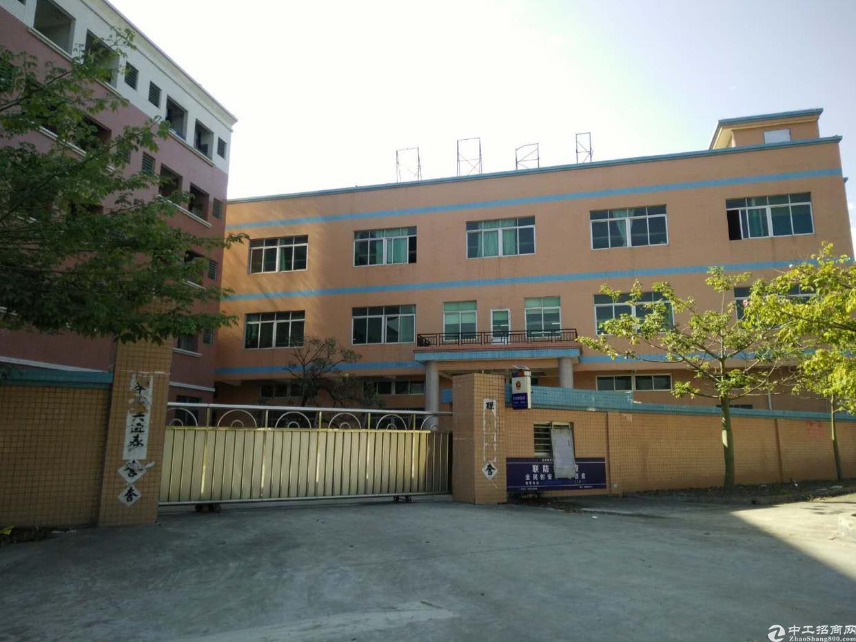虎门新出院房东独院厂房2800平方米、宿舍1800、14元-图4
