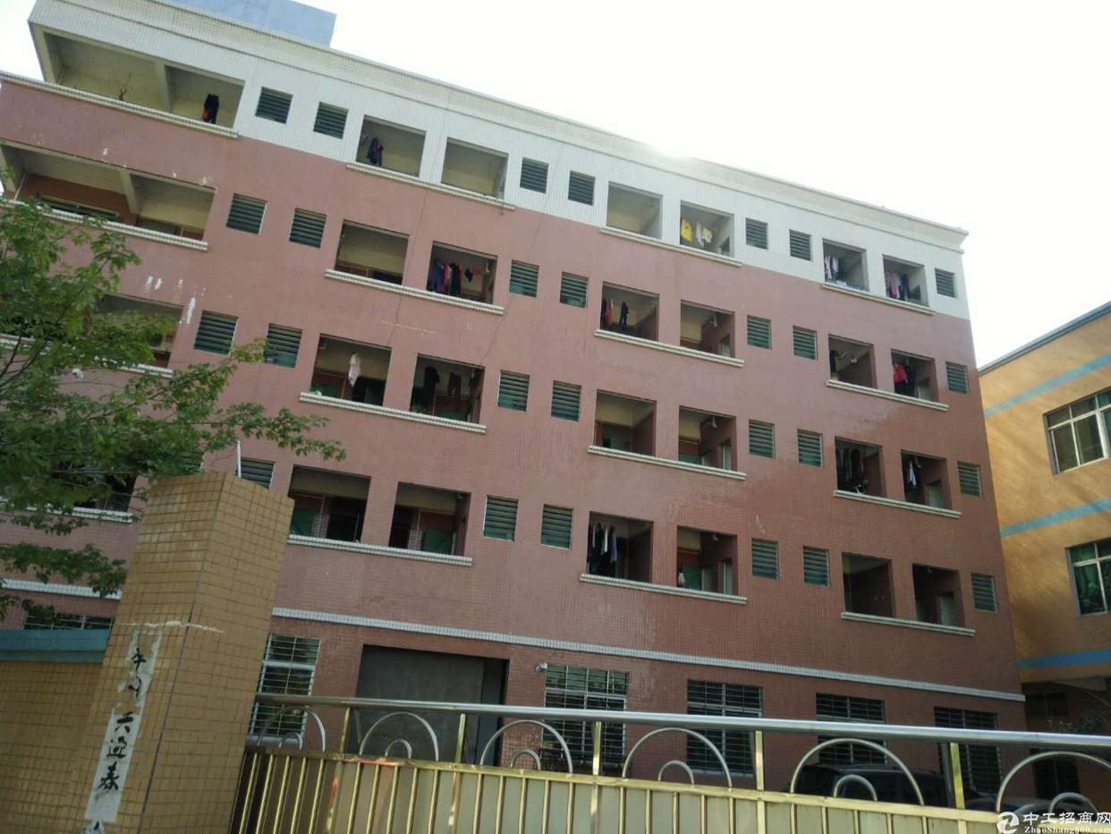虎门新出院房东独院厂房2800平方米、宿舍1800、14元