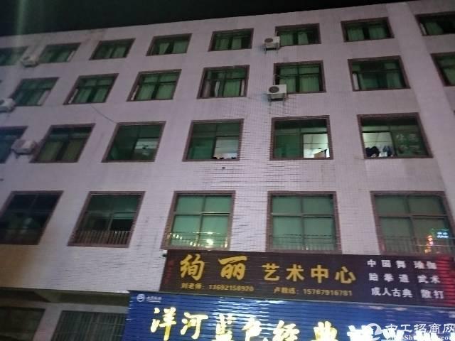 茶山独栋厂房带三吨电梯租8块
