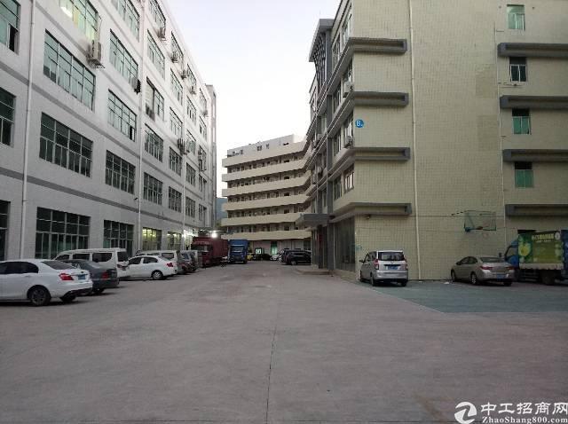 横岗碧岭全新厂房现空出三楼1580平两部三吨电梯
