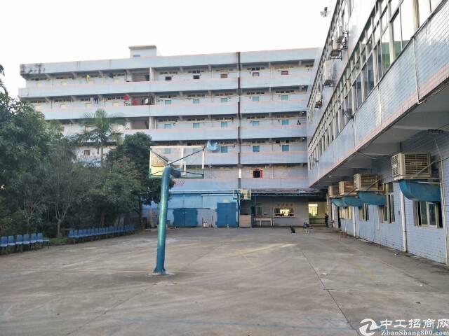 原房东花园式  独院6500平招租-图2