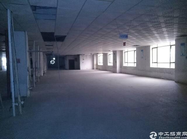 沙头实业客转租三楼2000全新装修厂房-图3