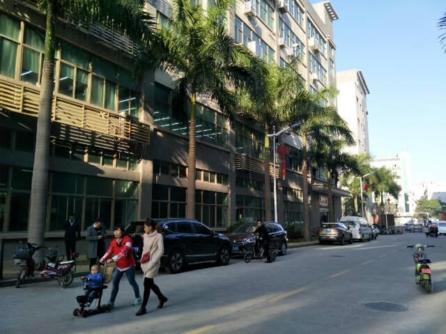 龙华大浪行政中心旁红本厂房一楼500平招租