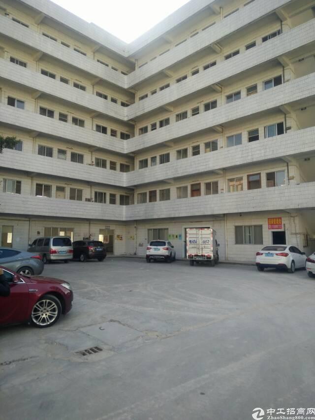 虎门镇北栅新出厂房一楼2100平方,带装修出租