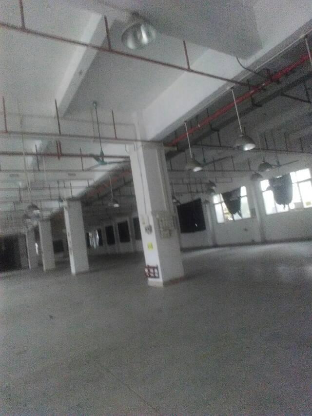 虎门大宁村标准二楼厂房出租面积3620平租9元电315kva-图3
