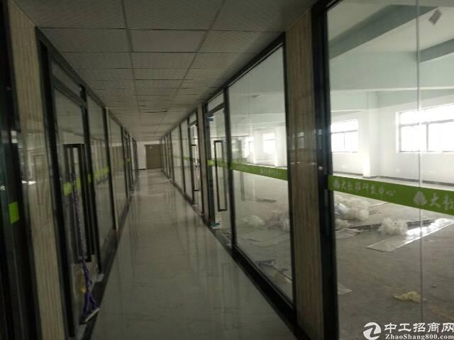 龙华天虹附近新出电商园80到2000平方