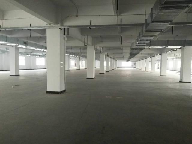 长安镇高速出口新出楼上一整层5000平米火爆招租。-图2