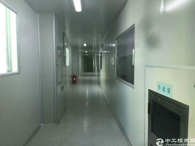龙华独院厂房6600平方出租-图8