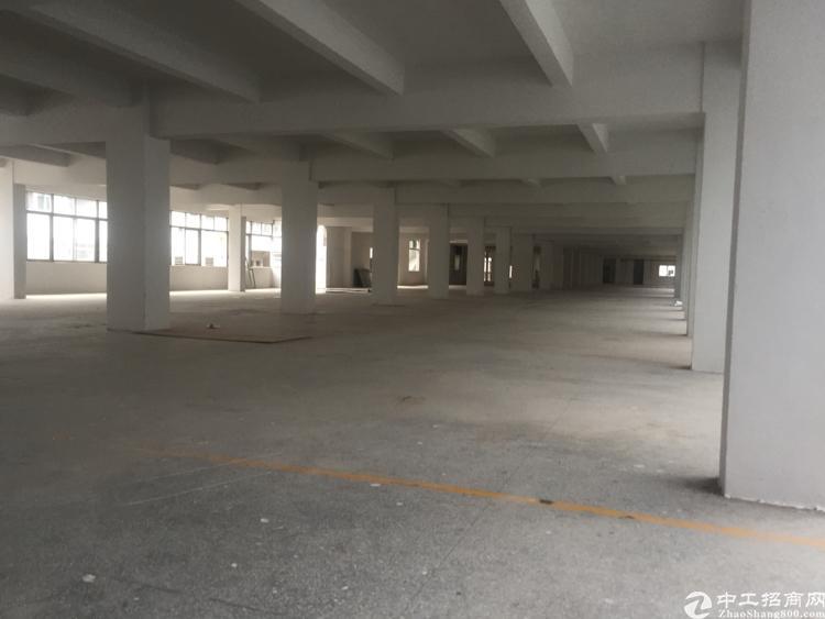 虎门北栅工业园区招租,交通便利、空地大-图4