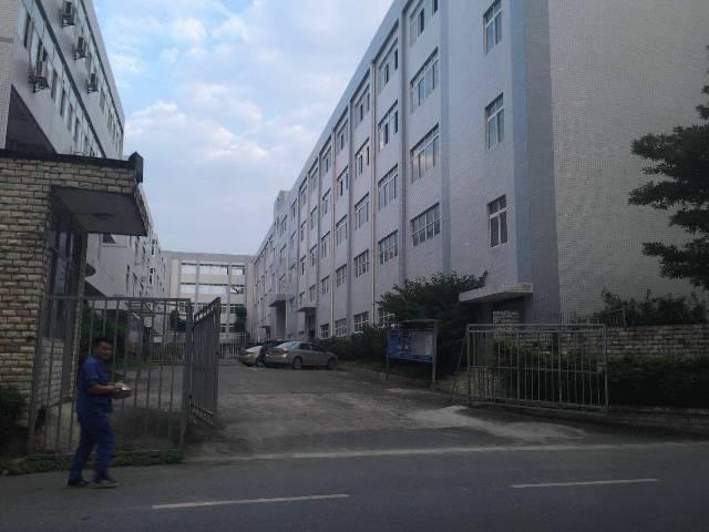 大岭山杨屋厂房出租-图7
