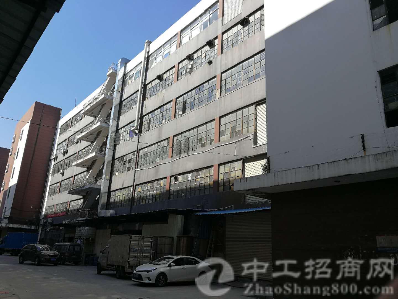 深圳龙岗建筑面积2244.7㎡国有建筑物转让