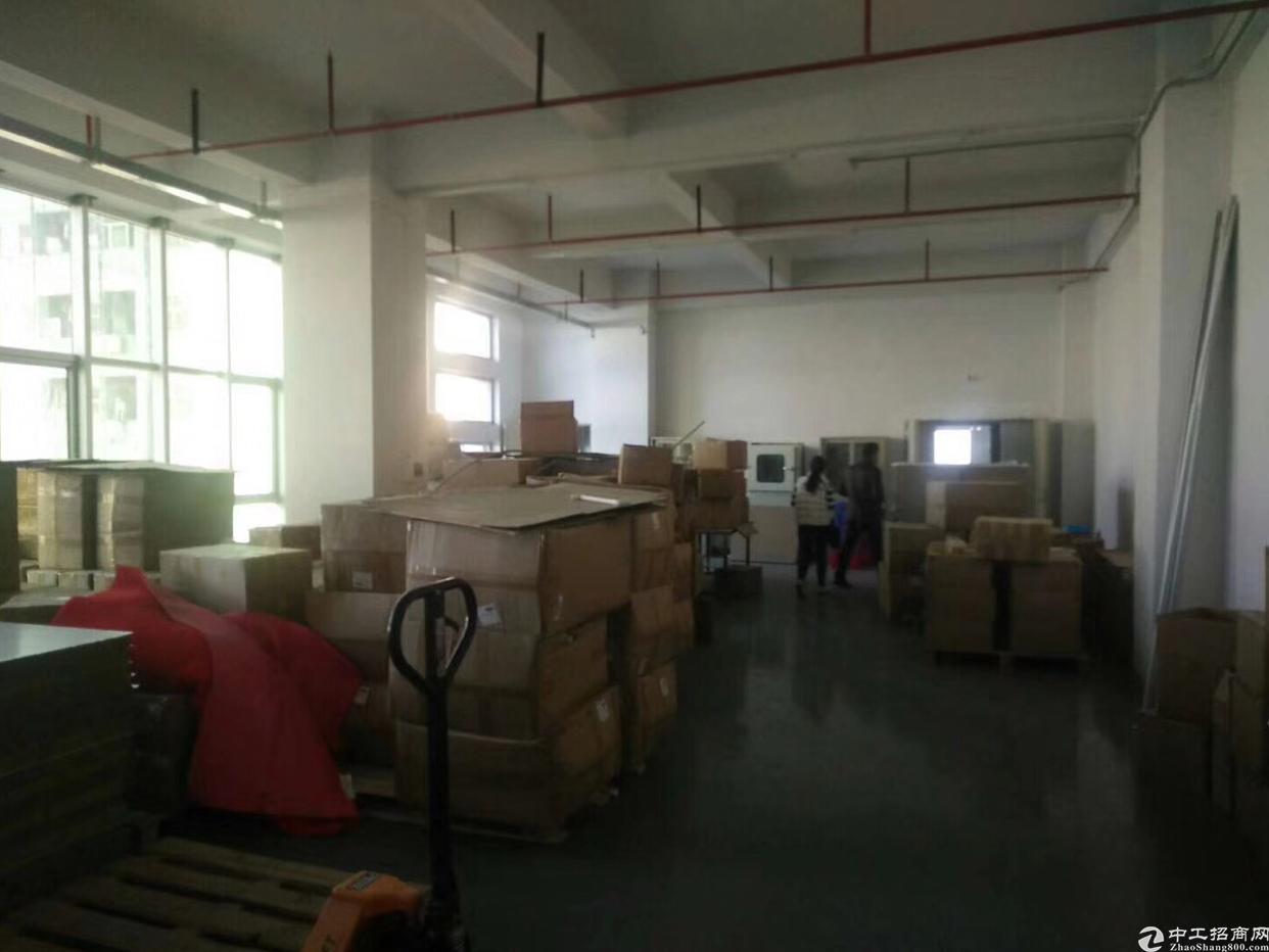 福永带装修780平方厂房出租