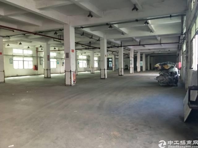 观澜福前路边上新出楼上1600平方无尘车间出租