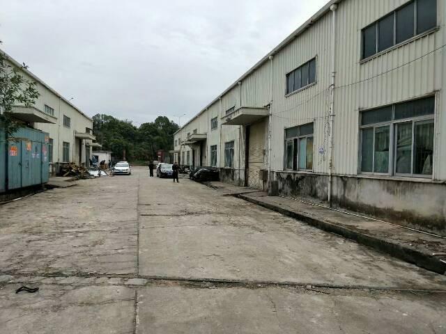 坪地工业园钢构厂房2600㎡出租