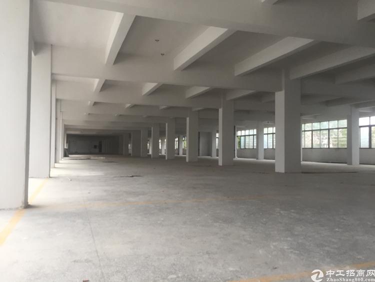 虎门北栅工业园区招租,交通便利、空地大-图6
