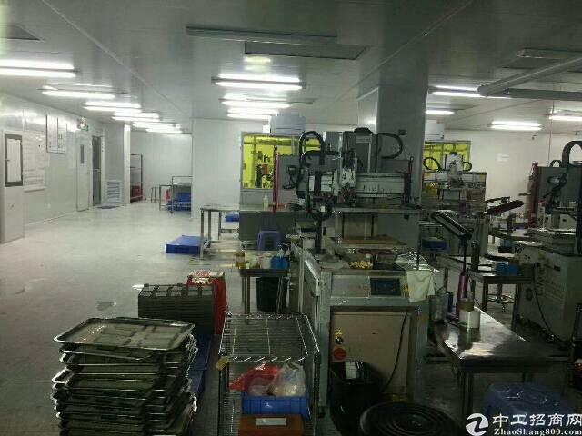 龙华独院厂房6600平方出租-图5