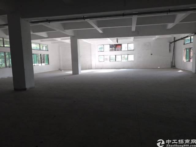 东莞市寮步镇新出原可做污染的厂房出租-图4