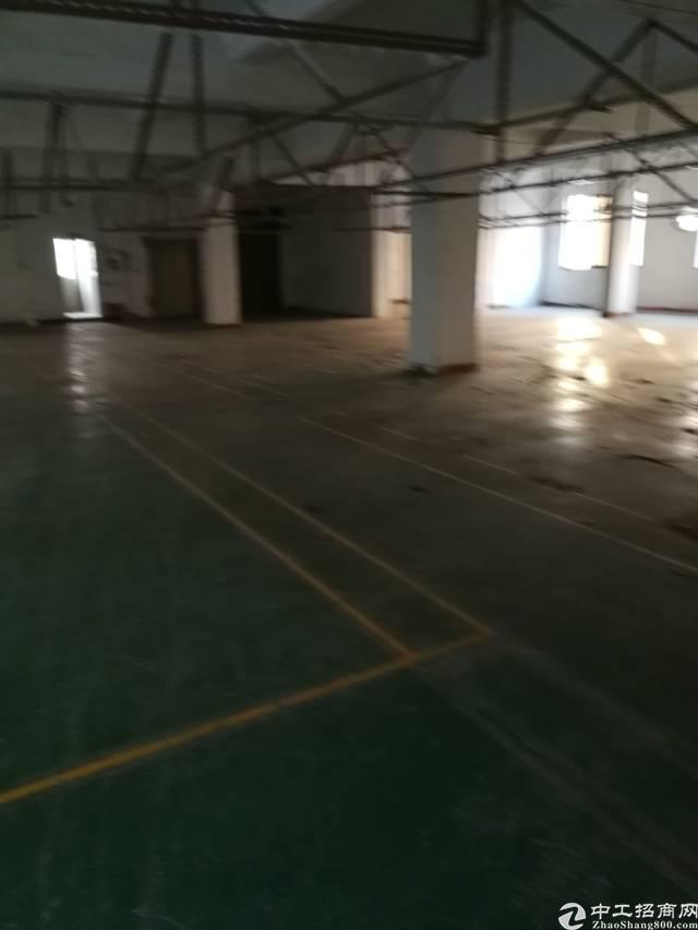 虎门镇北栅 独院厂房+宿舍面积7500平方/15-图2