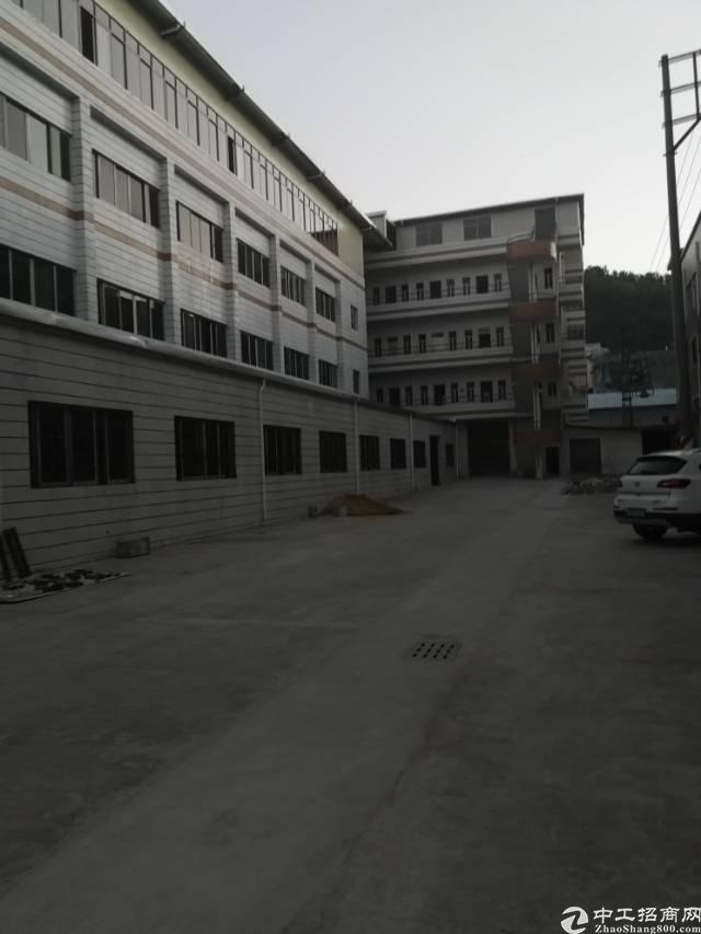 虎门镇北栅 独院厂房+宿舍面积7500平方/15-图3