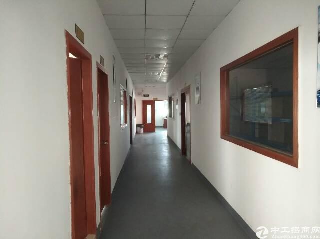 沙头实业客转租三楼2000全新装修厂房-图6