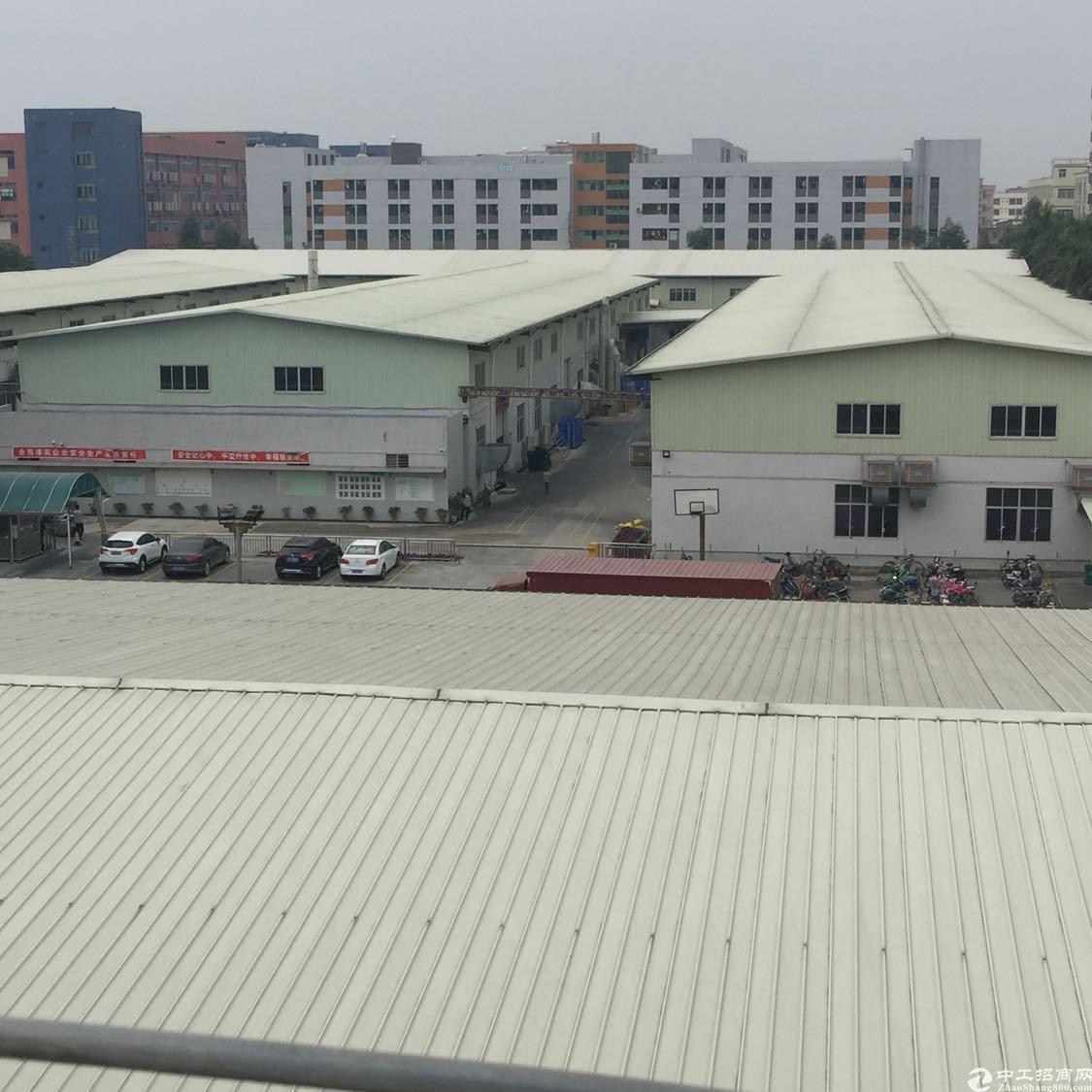 原房东厂房9米高长度100米有天然气