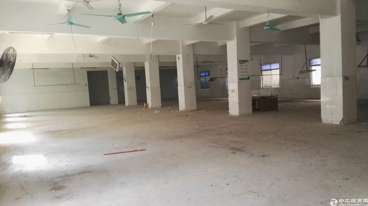布吉南岭一楼2018平出租-图3