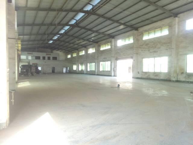 单一层厂房出租1500平米