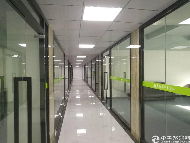 龙华天虹旁新出办公室230平