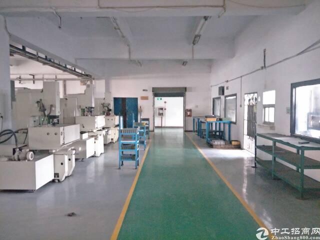 原房东花园式  独院6500平招租-图7