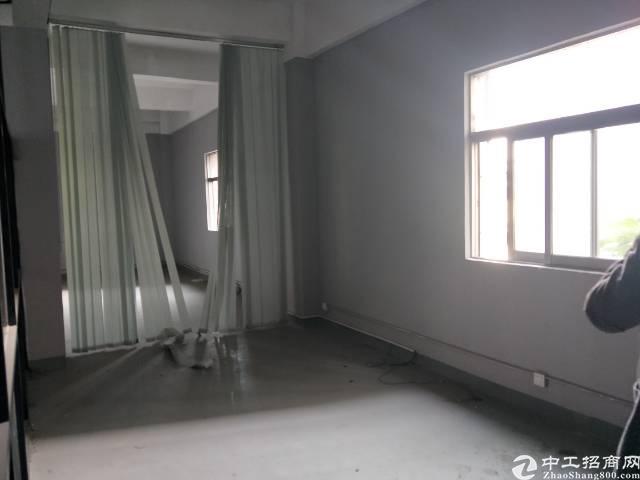 沙井新桥3楼450平方带装修厂房-图3