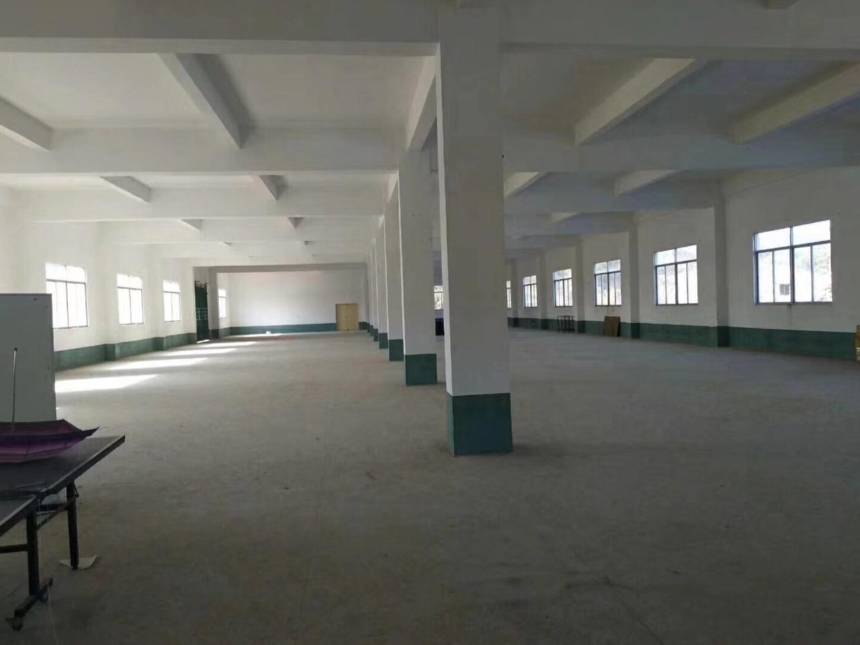凤岗镇新出独栋厂房5100平方-图2