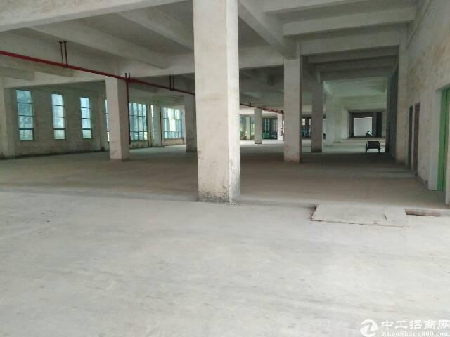 龙岗坪地全新带红本厂房10600平招租