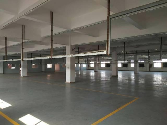 长安镇高速出口新出楼上一整层5000平米火爆招租。-图5