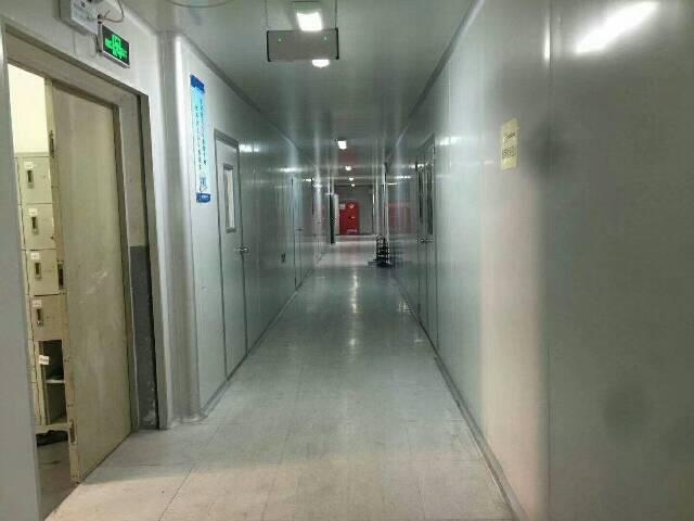 龙华独院厂房6600平方出租-图2