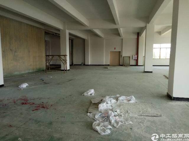 企石东部快线旁新出原房东楼上标准厂房招租-图2
