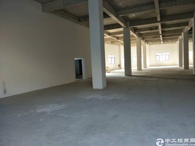 杨屋1800平米标准一楼厂房出租-图2