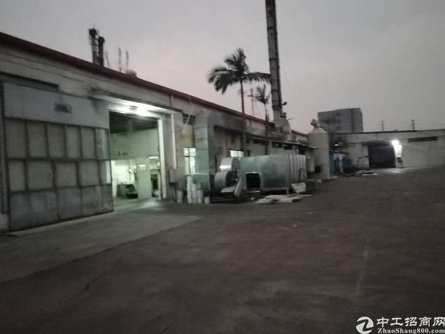 清溪原房东独院钢构厂房6500平米-图2