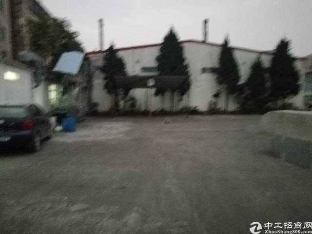 清溪原房东独院钢构厂房6500平米-图5