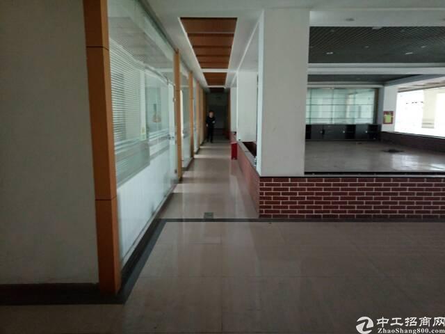 龙华民治上塘1600平方米厂房招租-图7