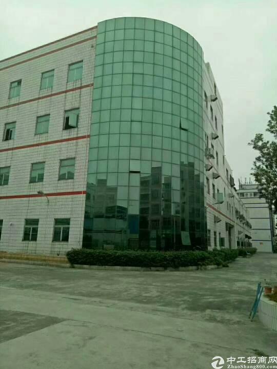 好消息红本厂房!合同五年签!厂房三栋A栋四层6400平米
