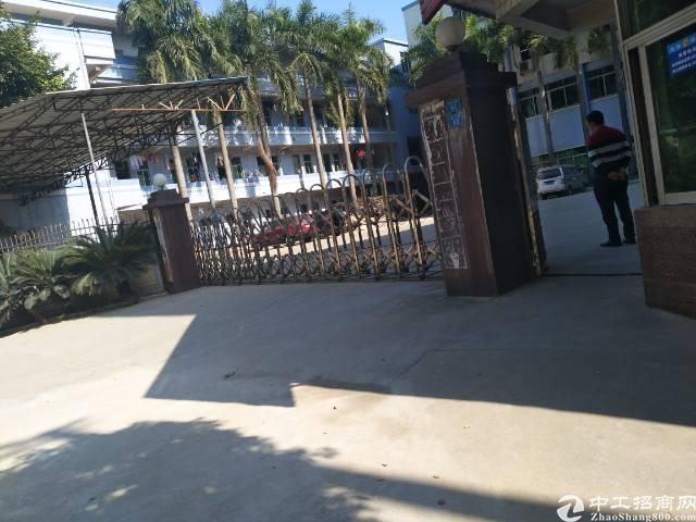 黄江镇板湖村新出一楼1500平米标准厂房一楼-图2