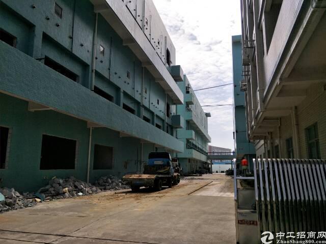 清溪新出楼上一整层标准厂房-图3