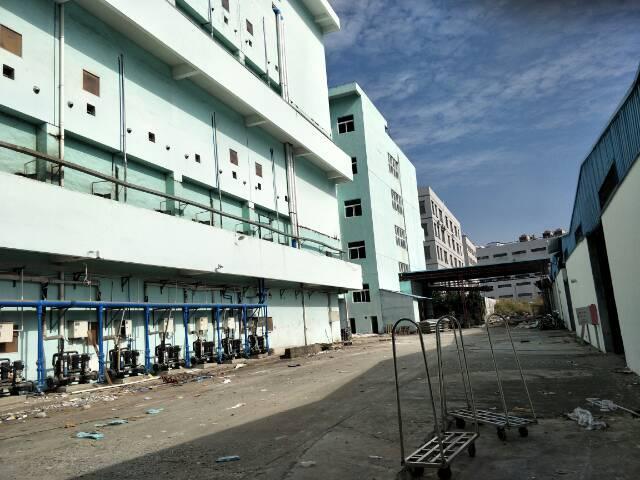 清溪新出楼上一整层标准厂房-图2