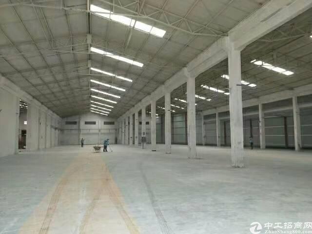 松岗新出原房东钢构厂房2200平米无公摊,出租